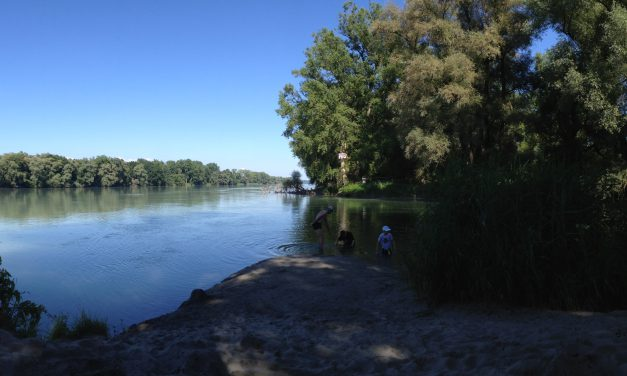 Feldforschung – Raus in die Natur
